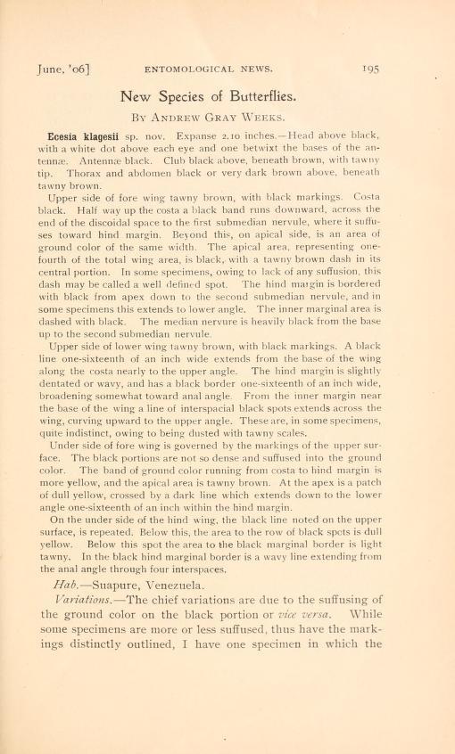 Weeks (1906), Entomol. News 17(6):195-204