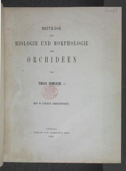 Beitrage zur Biologie und Morphologie der Orchideen by Johann Friedrich Thilo Irmisch